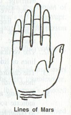 Palmistry and Other Lines
